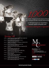 MC Marketing LW Aug 15